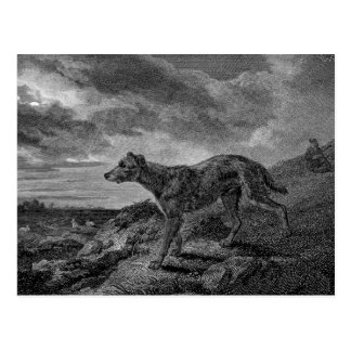 Lurcher Dogs Vintage Drawing Postcard
