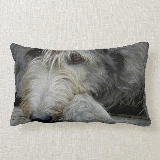 Lurcher Up Close | Lurcher Pillow Case