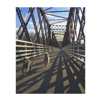 Lurchers Running Across A Bridge - Canvas