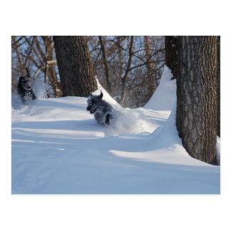 Lurchers Running Through The Snow - Postcard