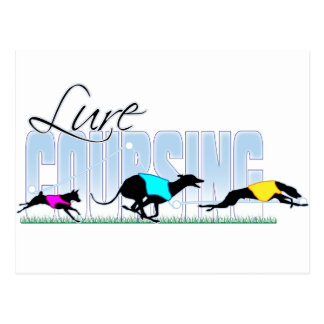 Lure Coursing Dogs Postcards