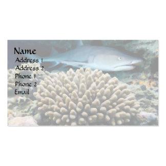 Lurking Shark Business Card