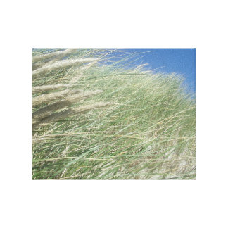 Lush Beach Grass Canvas Print