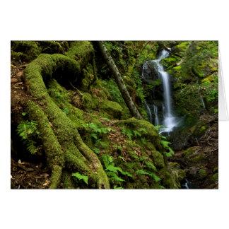 Lush California Waterfall Greeting Card