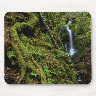 Lush California Waterfall Mouse Pad