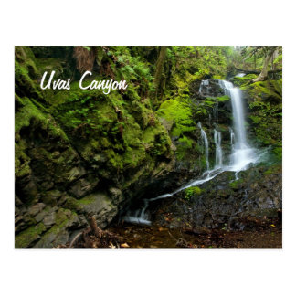Lush California Waterfall Postcard