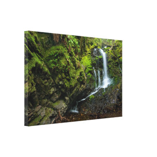 Lush California Waterfall Stretched Canvas Print