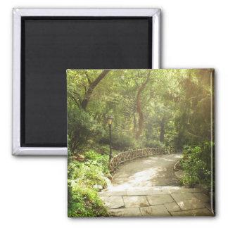 Lush Central Park Landscape, New York City 2 Inch Square Magnet