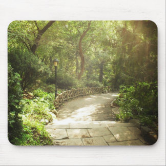 Lush Central Park Landscape, New York City Mouse Pad