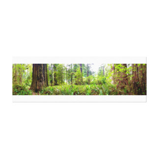lush forest canvas print