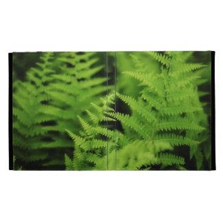 Lush Green Ferns iPad Folio Case