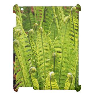 Lush green ferns case savvy ipad case