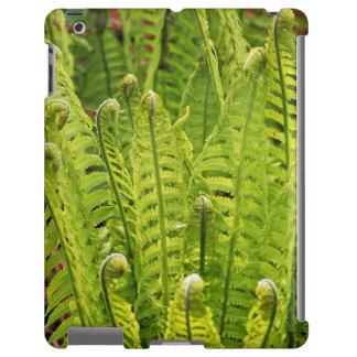 Lush green ferns ipad barely there case