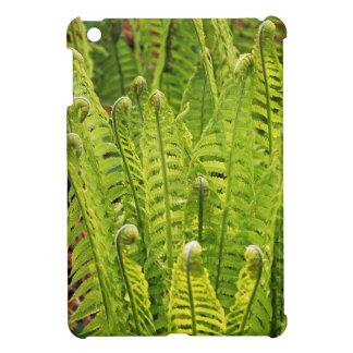 Lush green ferns ipad mini case