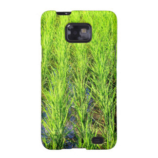 Lush Green Rice Paddy Fields in Bali Samsung Galaxy S Cases