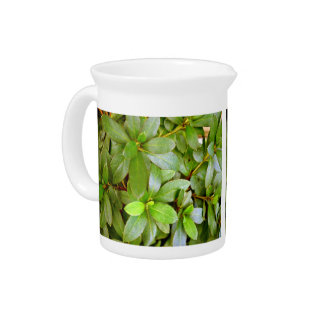 Lush leaves and stems beverage pitcher