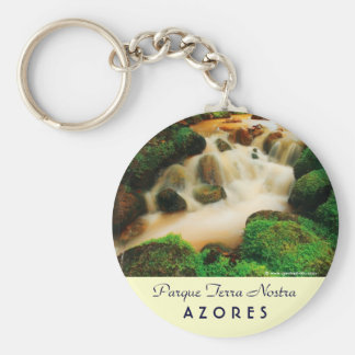 Lush Natural Colors Basic Round Button Keychain