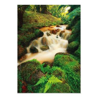 Lush Natural Colors Card