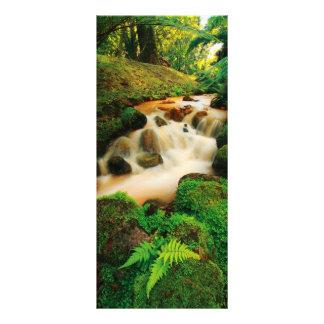 Lush Natural Colors Custom Rack Card