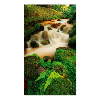 Lush Natural Colors - Pocket Calendar Business Card Templates