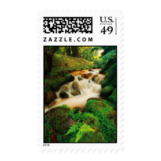 Lush Natural Colors Postage Stamp