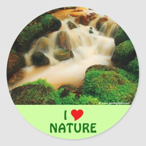 Lush Natural Colors Stickers