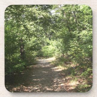 Lush Pennsylvania Trail Coasters