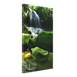 Lush Rain Forest Waterfall in Sunlight Stretched Canvas Prints