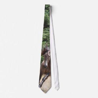 Lusitano Horse at Liberty Neck Tie