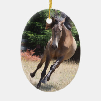 Lusitano Horse at Liberty Double-Sided Oval Ceramic Christmas Ornament