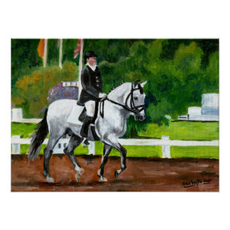 Lusitano Horse Portrait Poster