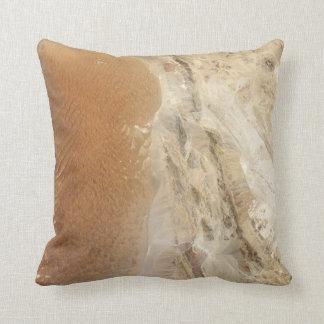Lut Desert Iran from Space Pillow