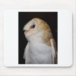 Luther- Common Barn Owl II Mouse Pad