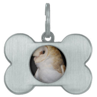 Luther- Common Barn Owl II Pet Name Tag