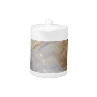 Luther- Common Barn Owl II Teapot