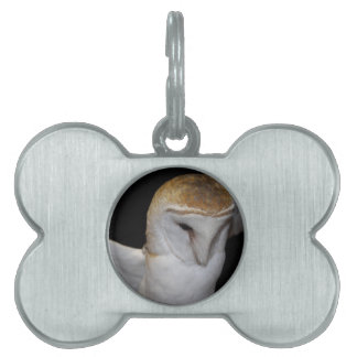 Luther- Common Barn Owl III Pet Tag