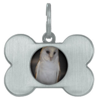 Luther- Common Barn Owl IV Pet Tag