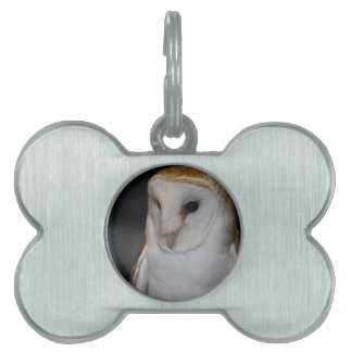Luther- Common Barn Owl V Pet Tag