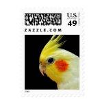 Lutino Cockatiel Postage Stamp