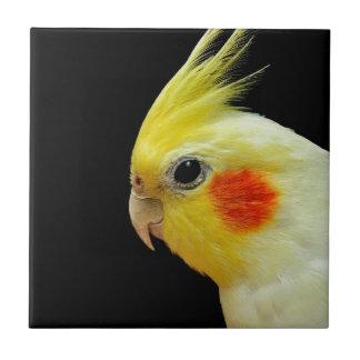 Lutino Cockatiel Tile