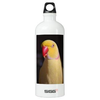 Lutino Indian Ringneck Parakeet Beak Aluminum Water Bottle