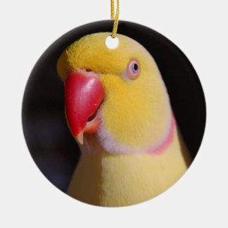 Lutino Indian Ringneck Parakeet Beak Ceramic Ornament