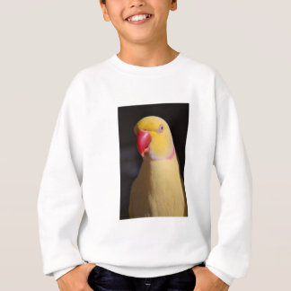 Lutino Indian Ringneck Parakeet Beak Sweatshirt