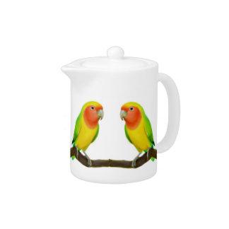 Lutino Lovebird Parrots Teapot