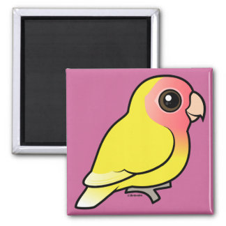 Lutino Peach-faced Lovebird 2 Inch Square Magnet