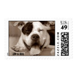 Luv-A-Bull Stamps