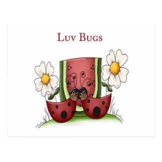 Luv Bugs Postcard