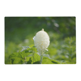 Luxuriant Bear Grass Laminated Placemat