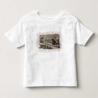 Luxury of Gardens, from 'Fragments on the Theory a T-shirt