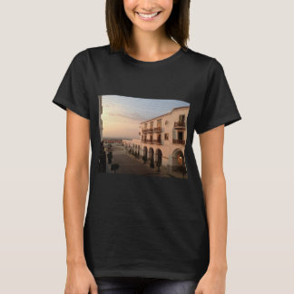 Luxury Themed, A Picture Of A Luxury Hotel And Its T-Shirt